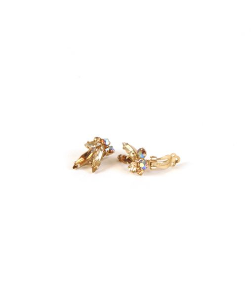 Sherman crystal earrings clip